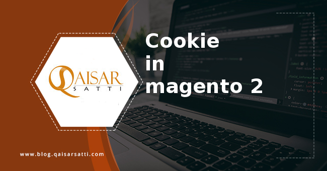 Cookie in magento 2
